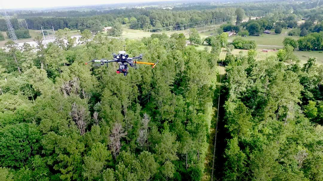 Flying High to Improve Vegetation Management