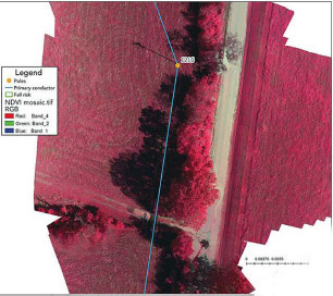 Color infrared image derived from the NDVI camera shows the cooperative's poles and conductors as well as vegetation biomass/density around the coop's structures.